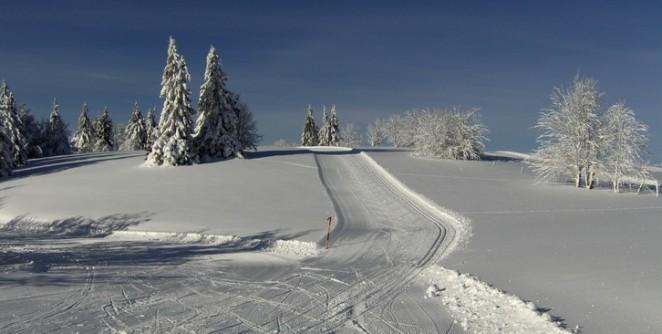 piste_de_ski_de_fond
