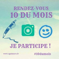 Macaron-10-du-mois-participation-e1455618420148
